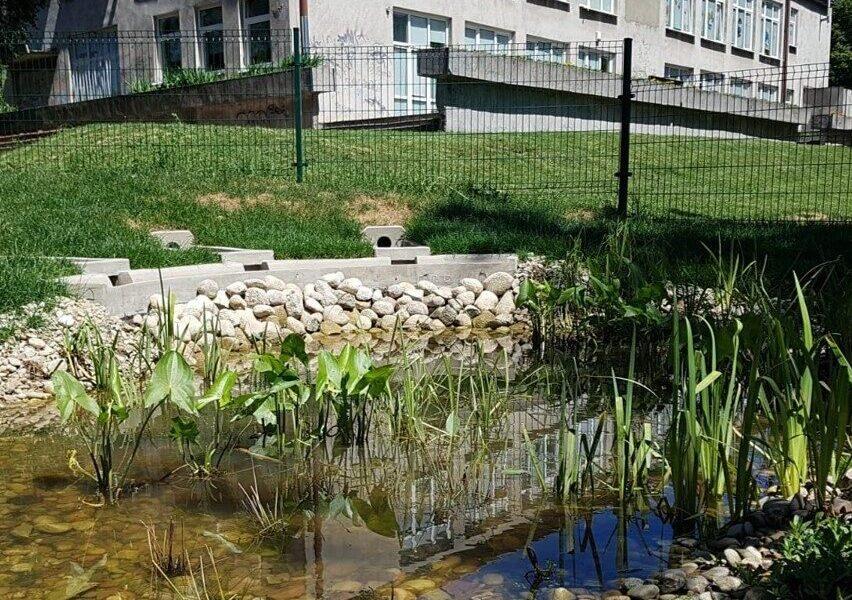 pond school
